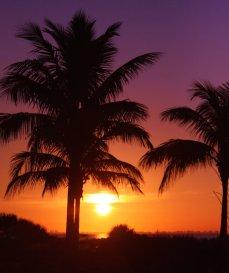 Sanibel Sunrise 3