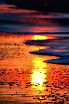 Sanibel Sunrise 1