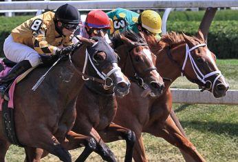 Saratoga Race Track 1